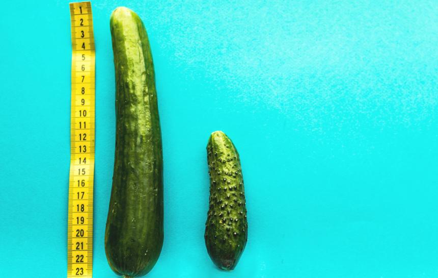 wielkość członka w stanie erekcji jakie witaminy są lepsze dla erekcji